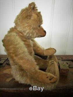 Antique Old Mohair Steiff Teddy Bear 12 Inches, Buzz
