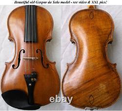 Beautiful Rare Old Da Salo Violin Antique Video- Master 193