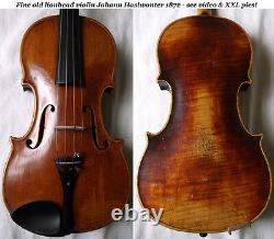 Old Allemand Lionhead Violin J. Haslwanter 1872 Vidéo Antique 508