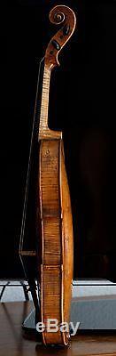 Très Vieux Violon Vintage Étiqueté Paolo Antonio Testore Geige